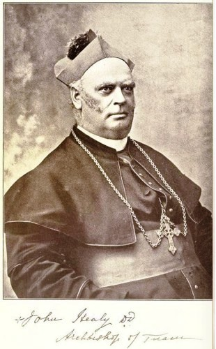 John Healy, Archbishop of Tuam (1903-19) | Skehana and District Heritage Society