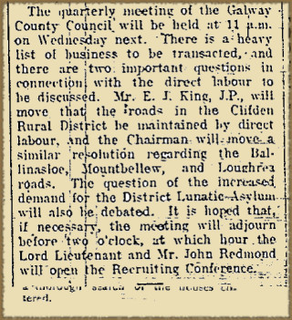 Agenda for Quarterly Meeting of Galway County Council from the Galway Express 29 January 1916