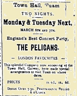 Advertisement from the Tuam Herald 04 March 1916