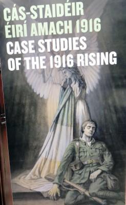 Case Studies of the 1916 Rising