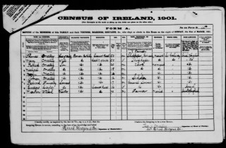 1901 Census return for O'Malley family in Ros Muc, Galway | National Archives